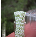 Green and White Straws_Wedding Photography